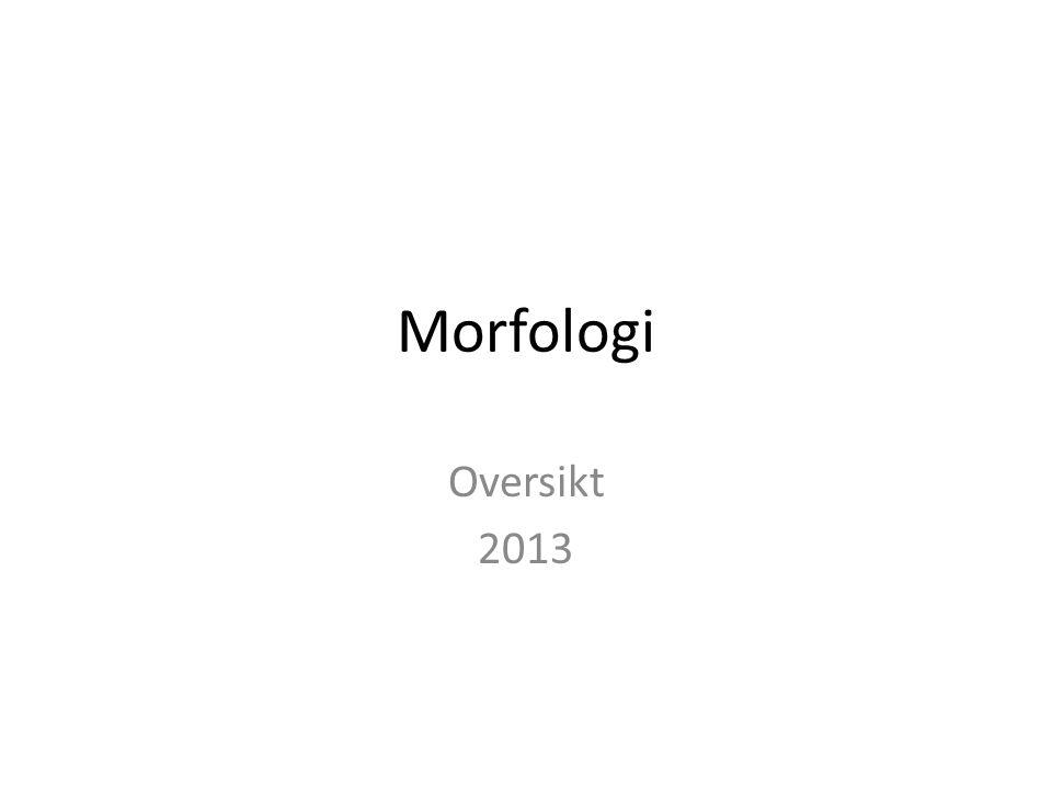 Morfologi Oversikt 2013