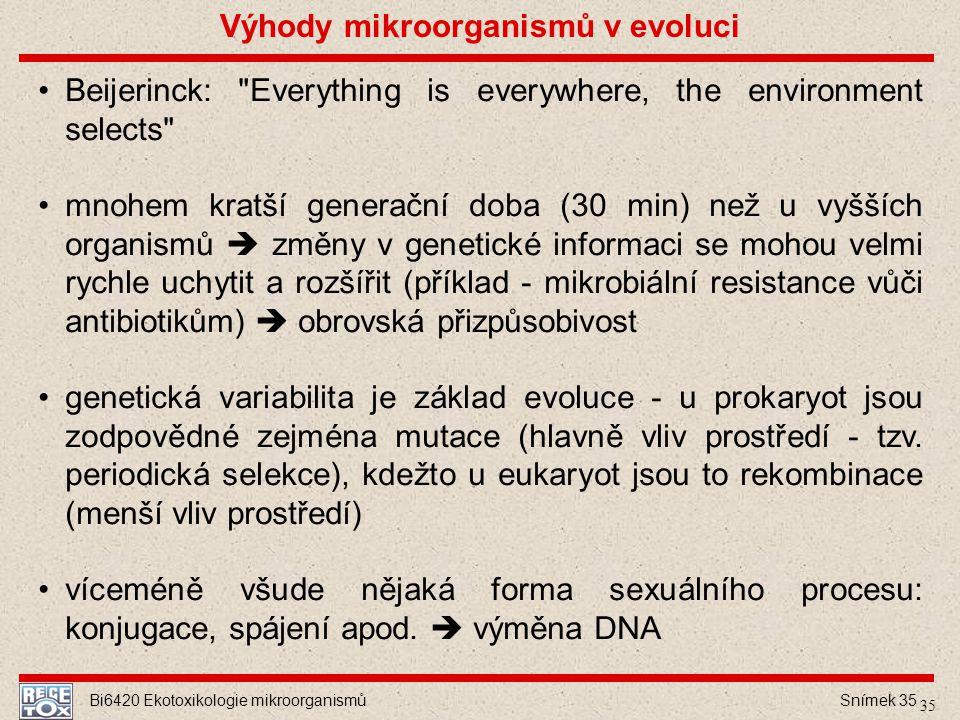 Bi6420 Ekotoxikologie mikroorganismů Snímek 35 Beijerinck: