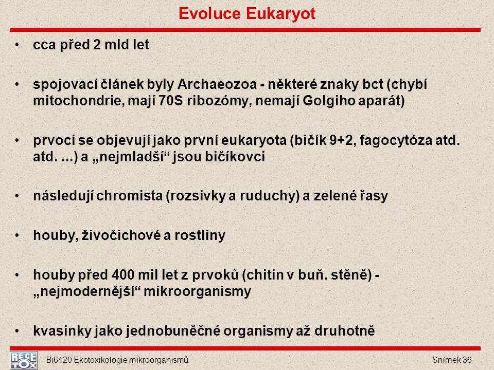 Bi6420 Ekotoxikologie mikroorganismů Snímek 36 Evoluce Eukaryot cca před 2 mld let spojovací článek byly Archaeozoa - některé znaky bct (chybí mitocho