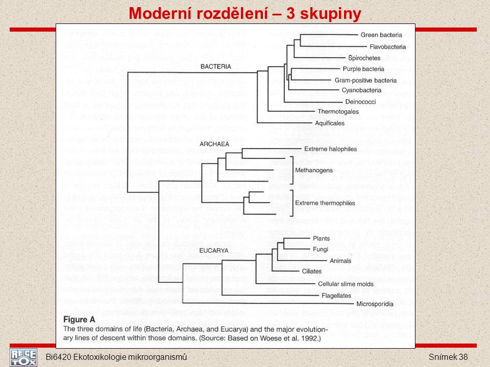 Bi6420 Ekotoxikologie mikroorganismů Snímek 38 Moderní rozdělení – 3 skupiny