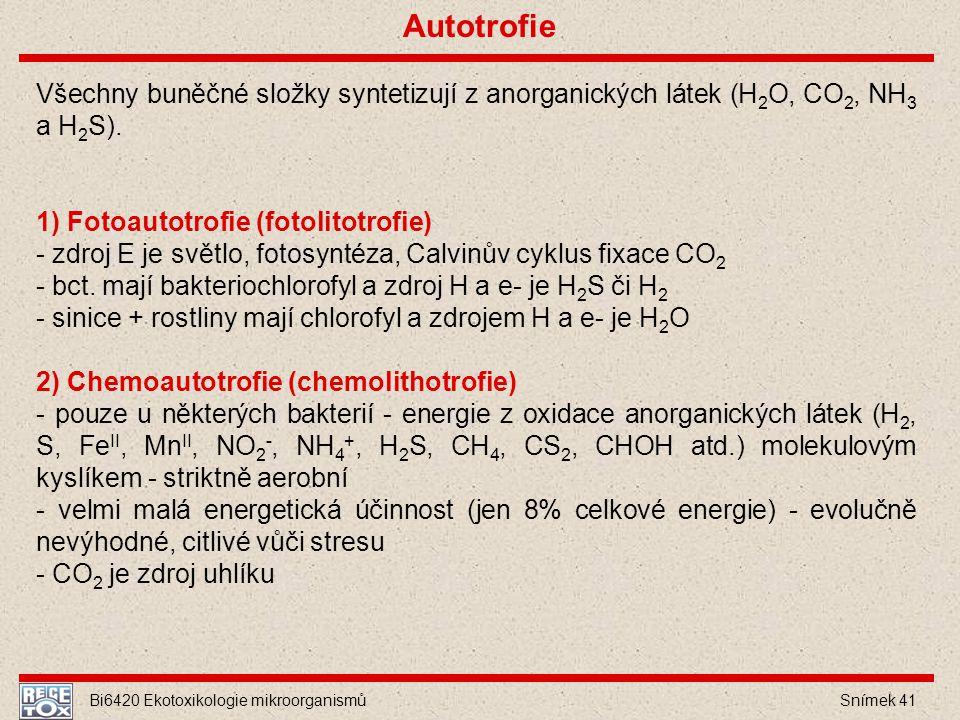 Bi6420 Ekotoxikologie mikroorganismů Snímek 41 Všechny buněčné složky syntetizují z anorganických látek (H 2 O, CO 2, NH 3 a H 2 S). 1) Fotoautotrofie