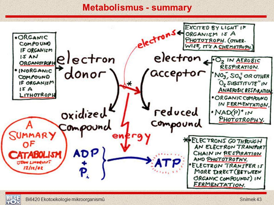 Bi6420 Ekotoxikologie mikroorganismů Snímek 43 Metabolismus - summary