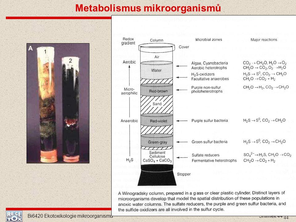 Bi6420 Ekotoxikologie mikroorganismů Snímek 44 44 Metabolismus mikroorganismů