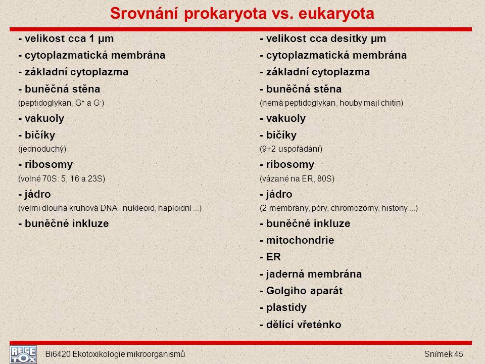 Bi6420 Ekotoxikologie mikroorganismů Snímek 45 - velikost cca 1 μm - cytoplazmatická membrána - základní cytoplazma - buněčná stěna (peptidoglykan, G