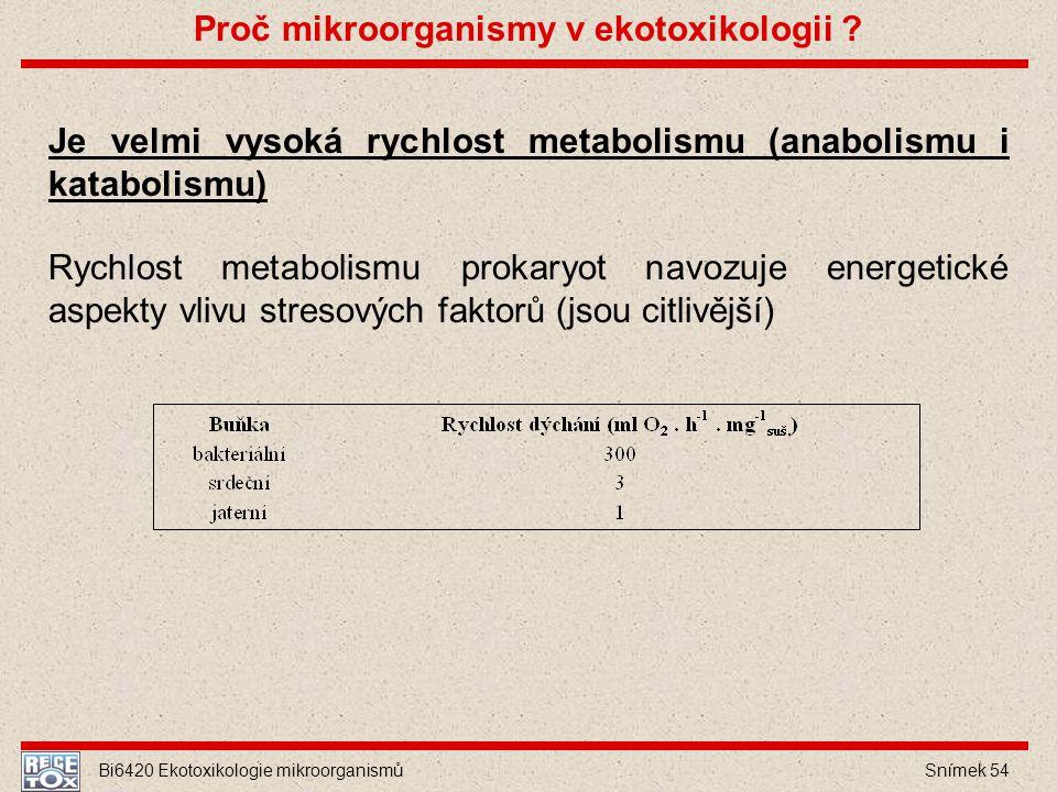 Bi6420 Ekotoxikologie mikroorganismů Snímek 54 Je velmi vysoká rychlost metabolismu (anabolismu i katabolismu) Rychlost metabolismu prokaryot navozuje