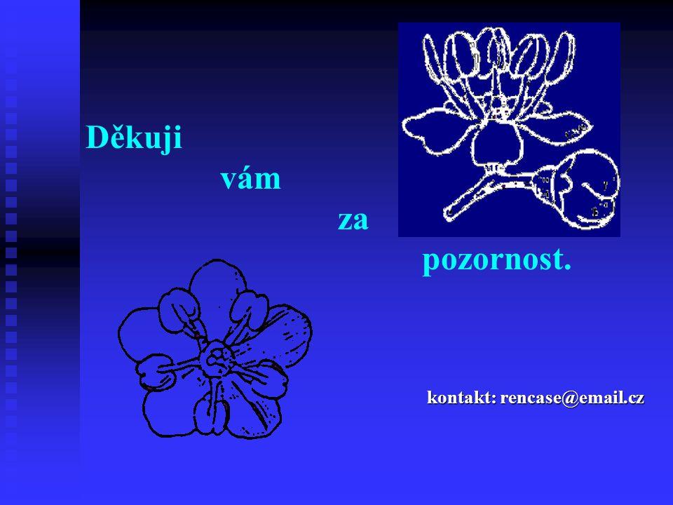 Děkuji vám za pozornost. kontakt: rencase@email.cz
