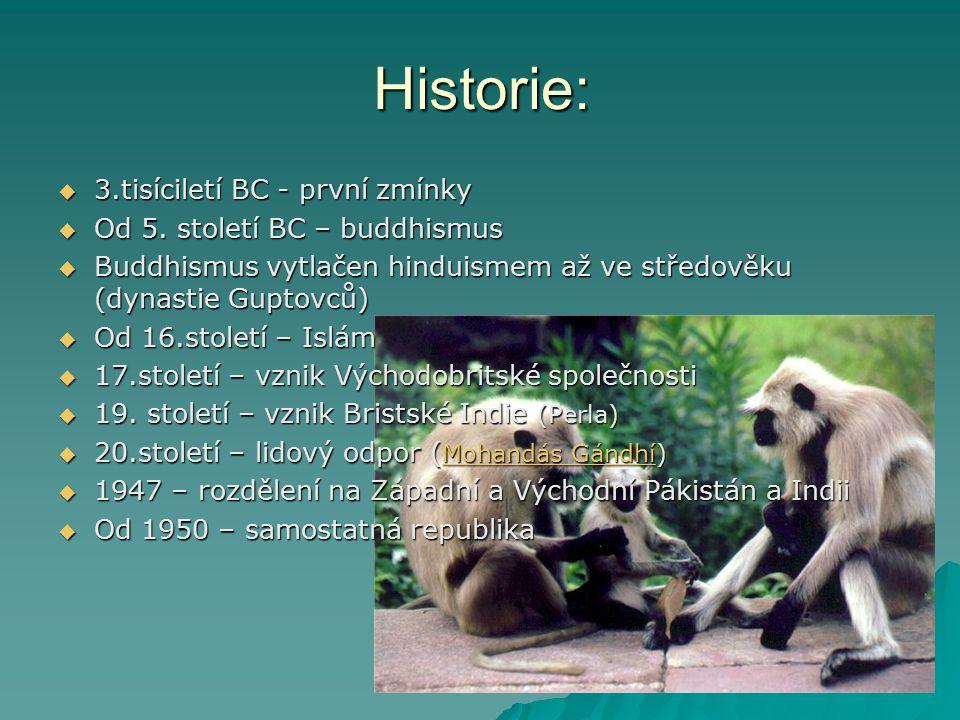 Historie:  3.tisíciletí BC - první zmínky  Od 5. století BC – buddhismus  Buddhismus vytlačen hinduismem až ve středověku (dynastie Guptovců)  Od