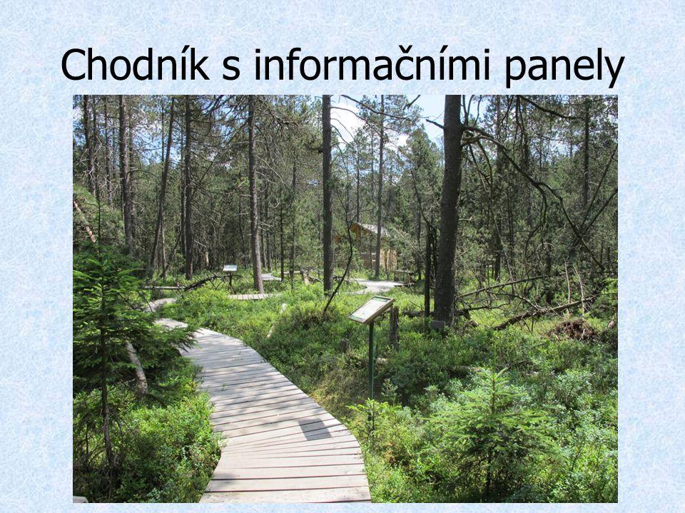 Chodník s informačními panely