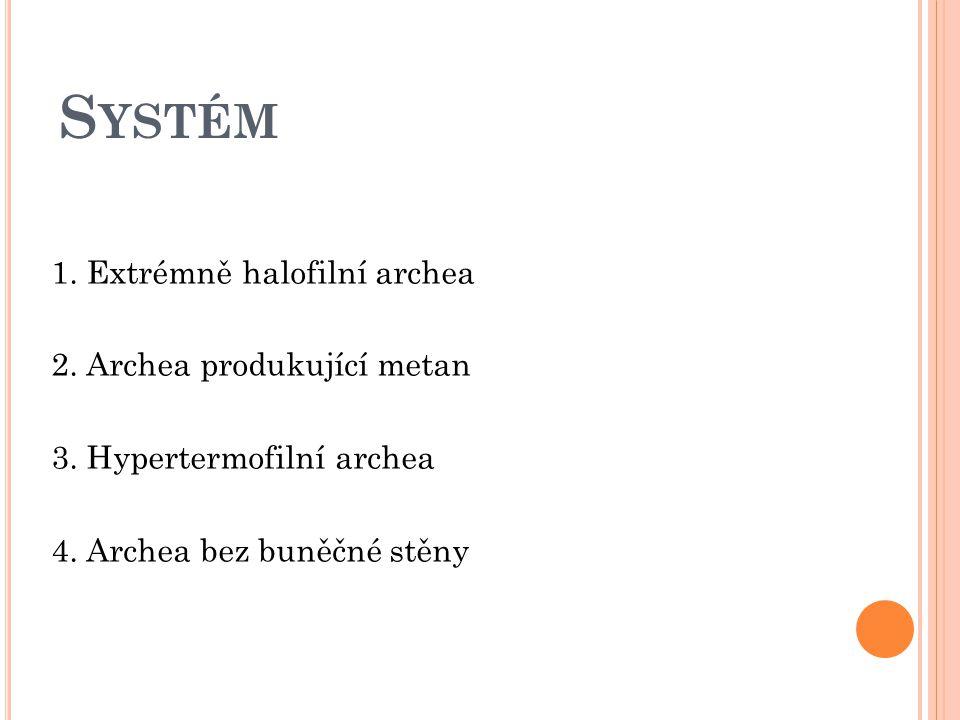 S YSTÉM 1. Extrémně halofilní archea 2. Archea produkující metan 3. Hypertermofilní archea 4. Archea bez buněčné stěny