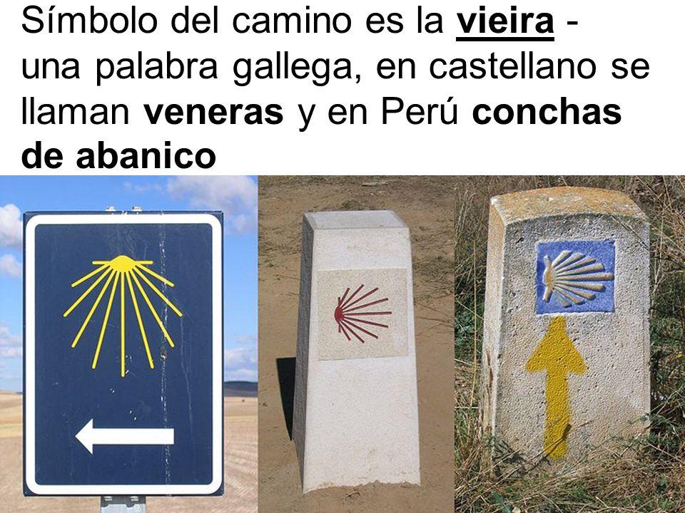 Símbolo del camino es la vieira - una palabra gallega, en castellano se llaman veneras y en Perú conchas de abanico