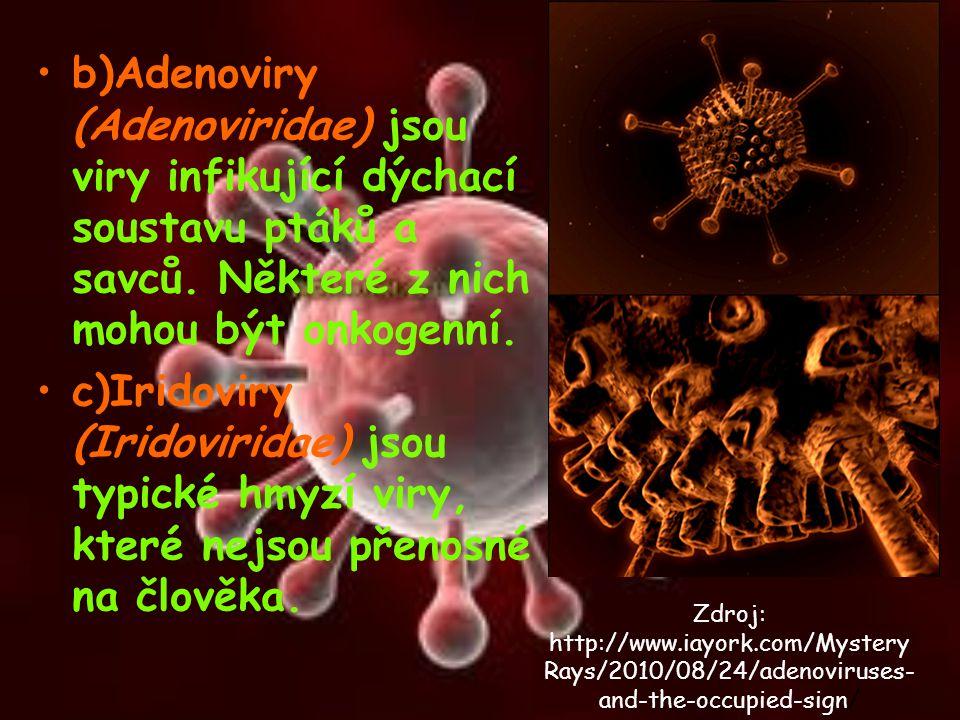b)Adenoviry (Adenoviridae) jsou viry infikující dýchací soustavu ptáků a savců. Některé z nich mohou být onkogenní. c)Iridoviry (Iridoviridae) jsou ty