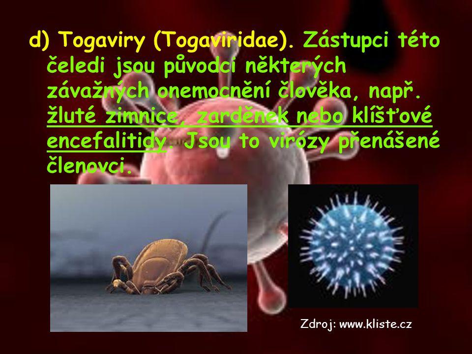 d) Togaviry (Togaviridae). Zástupci této čeledi jsou původci některých závažných onemocnění člověka, např. žluté zimnice, zarděnek nebo klíšťové encef