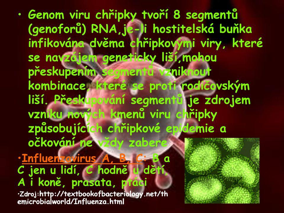 Genom viru chřipky tvoří 8 segmentů (genoforů) RNA,je-li hostitelská buňka infikována dvěma chřipkovými viry, které se navzájem geneticky liší,mohou p