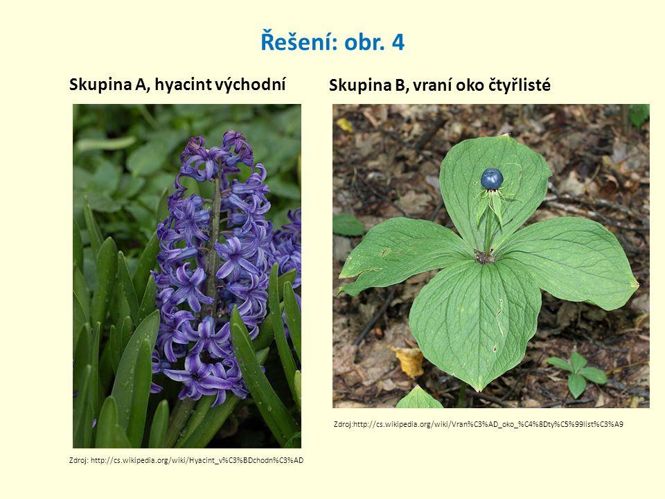 Řešení: obr. 4 Skupina A, hyacint východní Skupina B, vraní oko čtyřlisté Zdroj:http://cs.wikipedia.org/wiki/Vran%C3%AD_oko_%C4%8Dty%C5%99list%C3%A9 Z