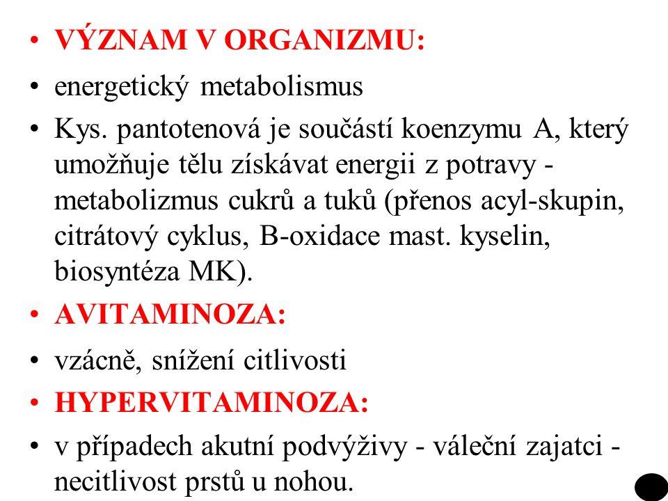 VÝZNAM V ORGANIZMU: energetický metabolismus Kys. pantotenová je součástí koenzymu A, který umožňuje tělu získávat energii z potravy - metabolizmus cu