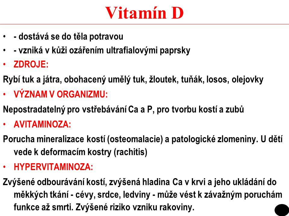 B12 (kobalamin) ZDROJE: každá dieta obsahující živočišnou bílkovinu by měla poskytnout odpovídající množství vit.