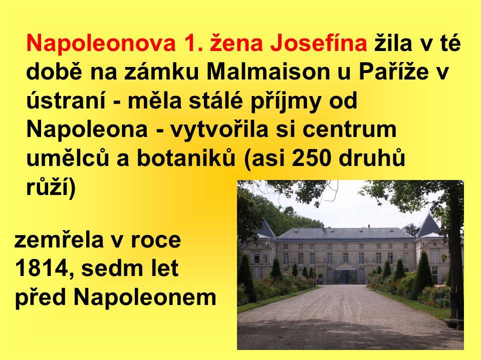 Napoleonova 1.