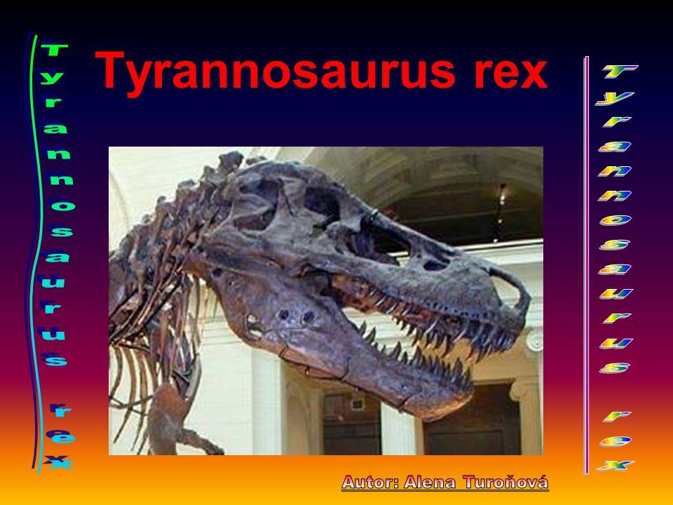 """. Tyrannosaurus rex jako (""""krutý ještěr ) byl jedním z posledních obrovitých a silných masožravců na světě.Patřil k největším dravcům,jaký kdy chodil po zemi.Gigantická chodidla připomínala nohy ptáků,měl tři prsty se silnými drápy.Měl lehkou stavbu kostry.Ocas používal k rovnováze a k běhu."""