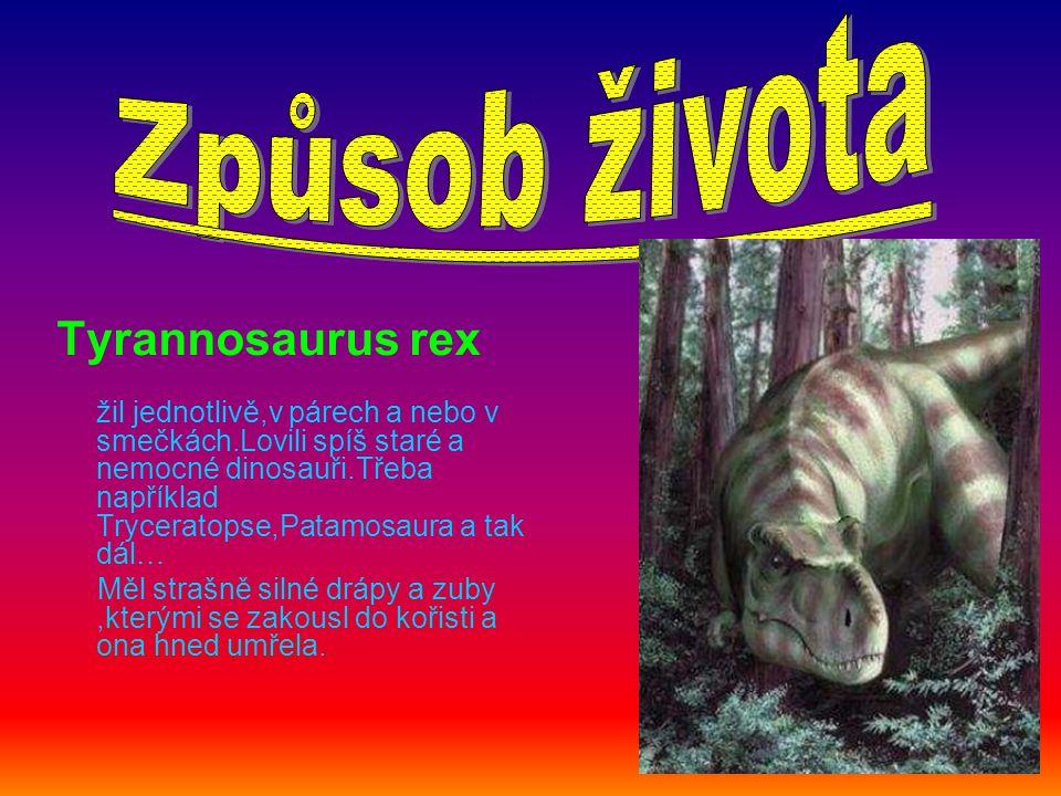 . Tyrannosaurus rex žil jednotlivě,v párech a nebo v smečkách.Lovili spíš staré a nemocné dinosauři.Třeba například Tryceratopse,Patamosaura a tak dál… Měl strašně silné drápy a zuby,kterými se zakousl do kořisti a ona hned umřela.