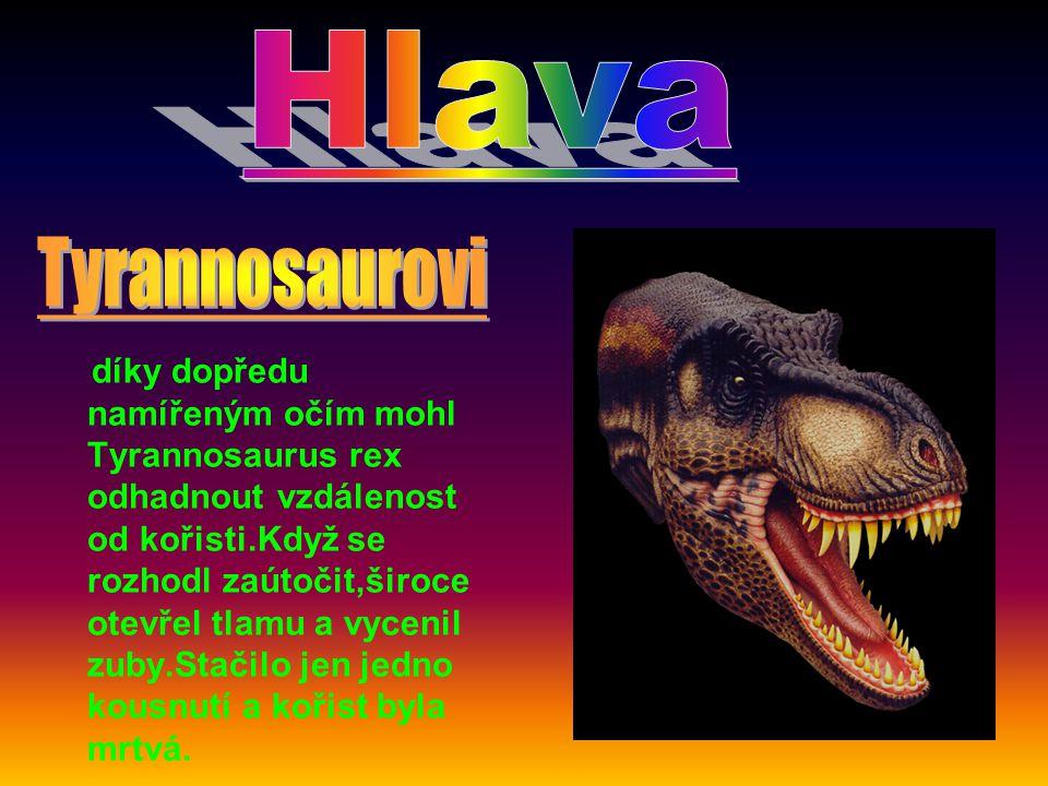 . díky dopředu namířeným očím mohl Tyrannosaurus rex odhadnout vzdálenost od kořisti.Když se rozhodl zaútočit,široce otevřel tlamu a vycenil zuby.Stačilo jen jedno kousnutí a kořist byla mrtvá.