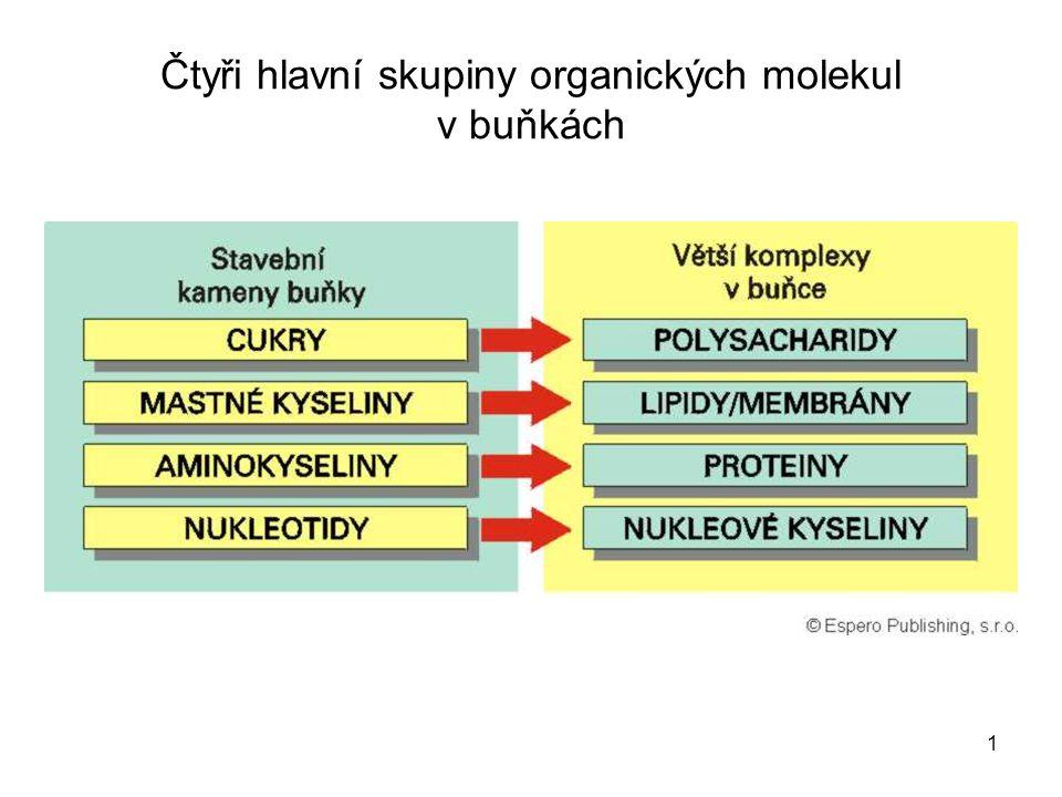 1 Čtyři hlavní skupiny organických molekul v buňkách
