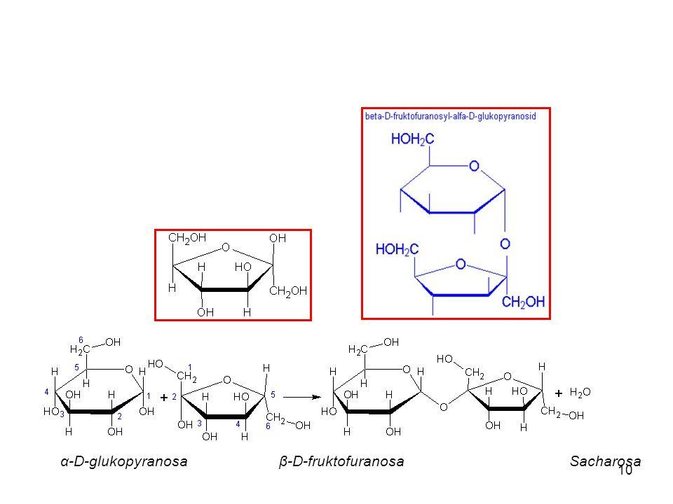 10 α-D-glukopyranosa β-D-fruktofuranosaSacharosa
