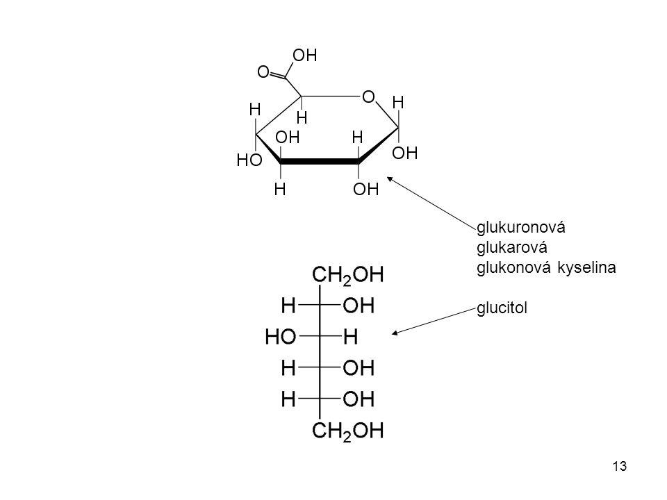 13 glukuronová glukarová glukonová kyselina glucitol
