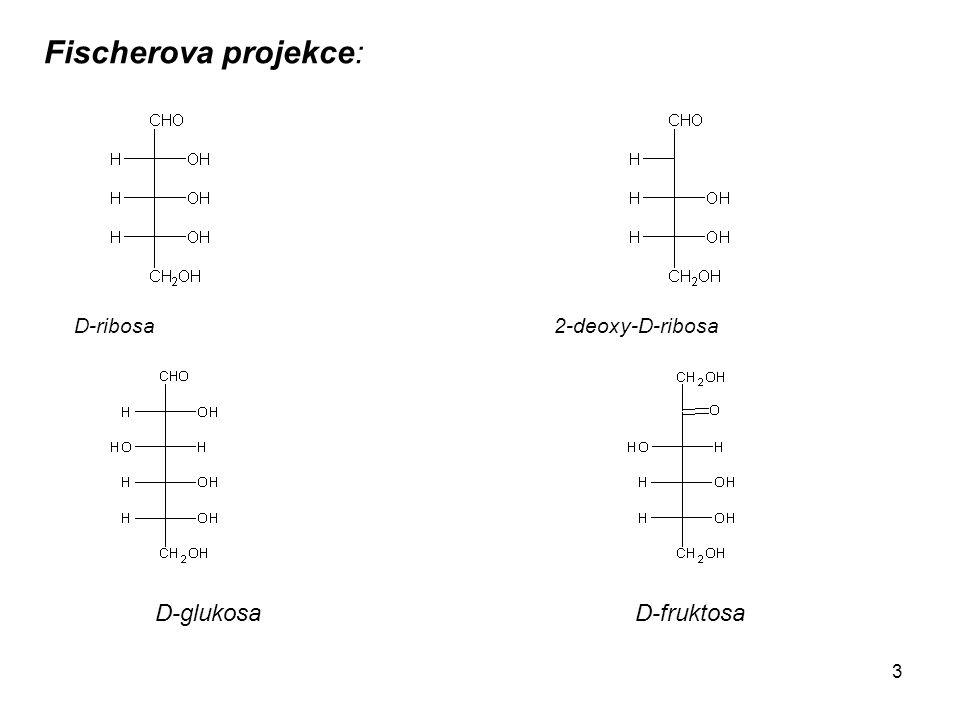 3 Fischerova projekce: D-ribosa 2-deoxy-D-ribosa D-glukosaD-fruktosa
