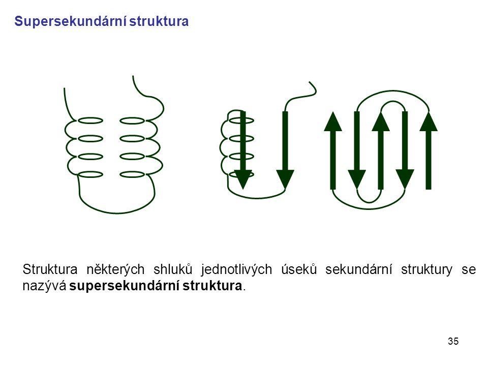 35 Supersekundární struktura Struktura některých shluků jednotlivých úseků sekundární struktury se nazývá supersekundární struktura.