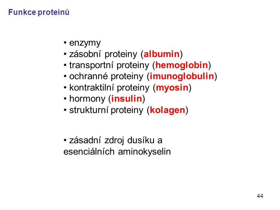 44 enzymy zásobní proteiny (albumin) transportní proteiny (hemoglobin) ochranné proteiny (imunoglobulin) kontraktilní proteiny (myosin) hormony (insul