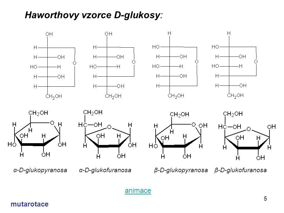 5 Haworthovy vzorce D-glukosy: α-D-glukopyranosa α-D-glukofuranosa β-D-glukopyranosa β-D-glukofuranosa animace mutarotace
