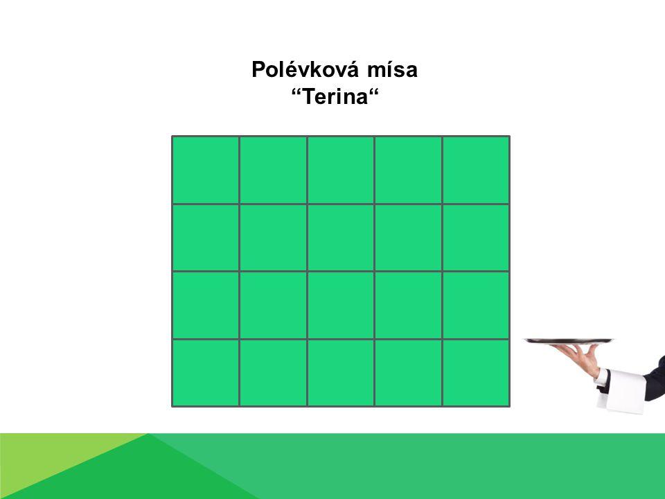 Polévková mísa Terina