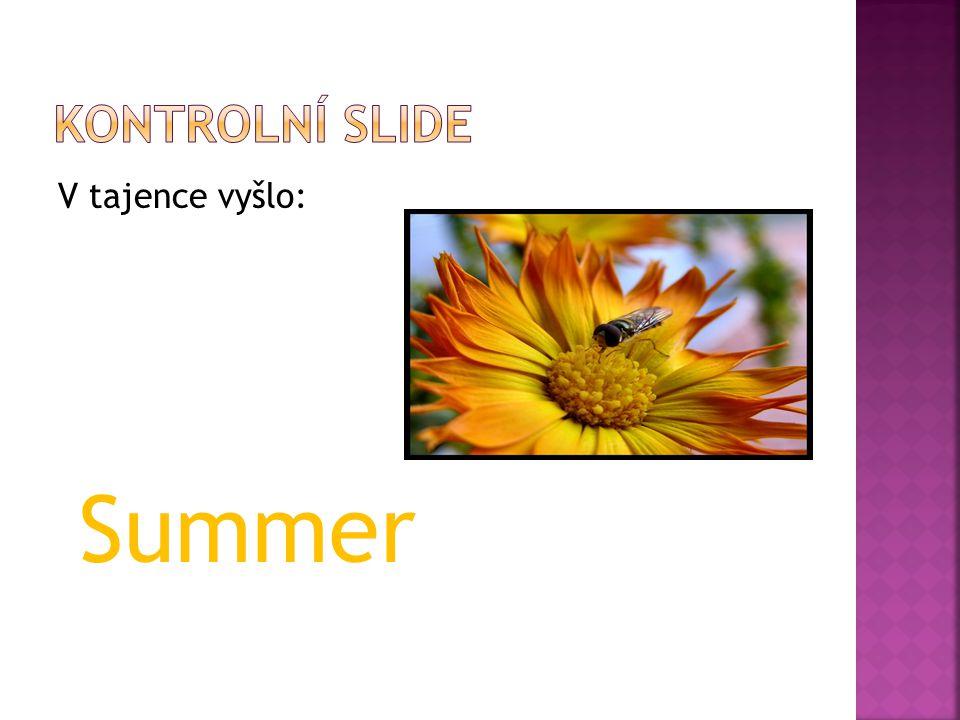 V tajence vyšlo: Summer