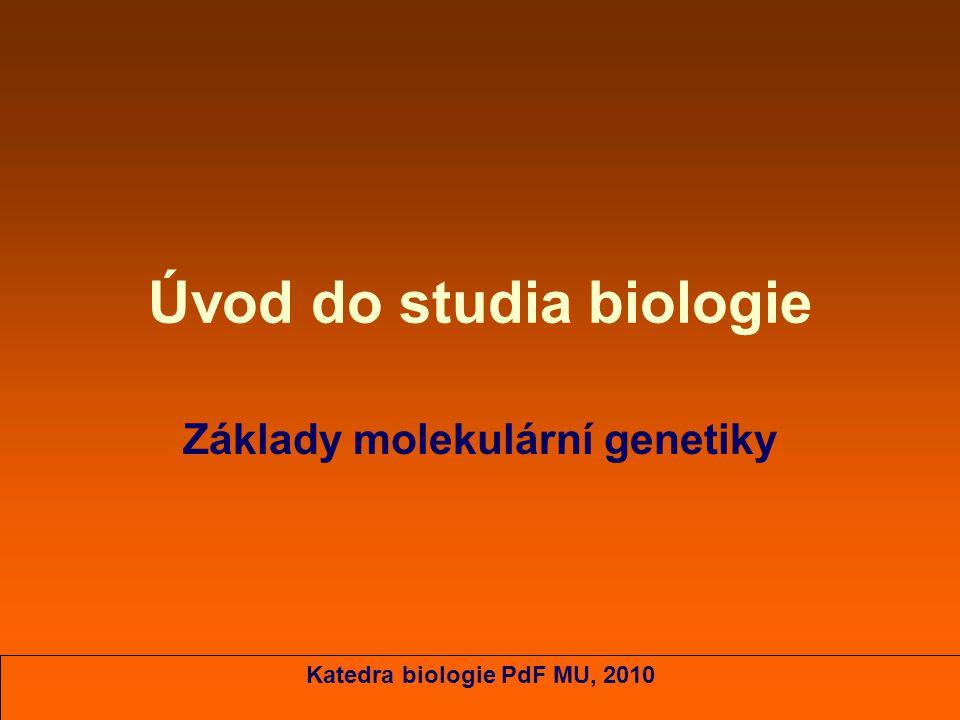 Úvod do studia biologie Základy molekulární genetiky Katedra biologie PdF MU, 2010
