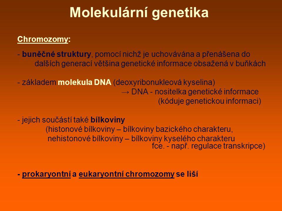 Molekulární genetika Chromozomy: - buněčné struktury, pomocí nichž je uchovávána a přenášena do dalších generací většina genetické informace obsažená v buňkách - základem molekula DNA (deoxyribonukleová kyselina) → DNA - nositelka genetické informace (kóduje genetickou informaci) - jejich součástí také bílkoviny (histonové bílkoviny – bílkoviny bazického charakteru, nehistonové bílkoviny – bílkoviny kyselého charakteru fce.
