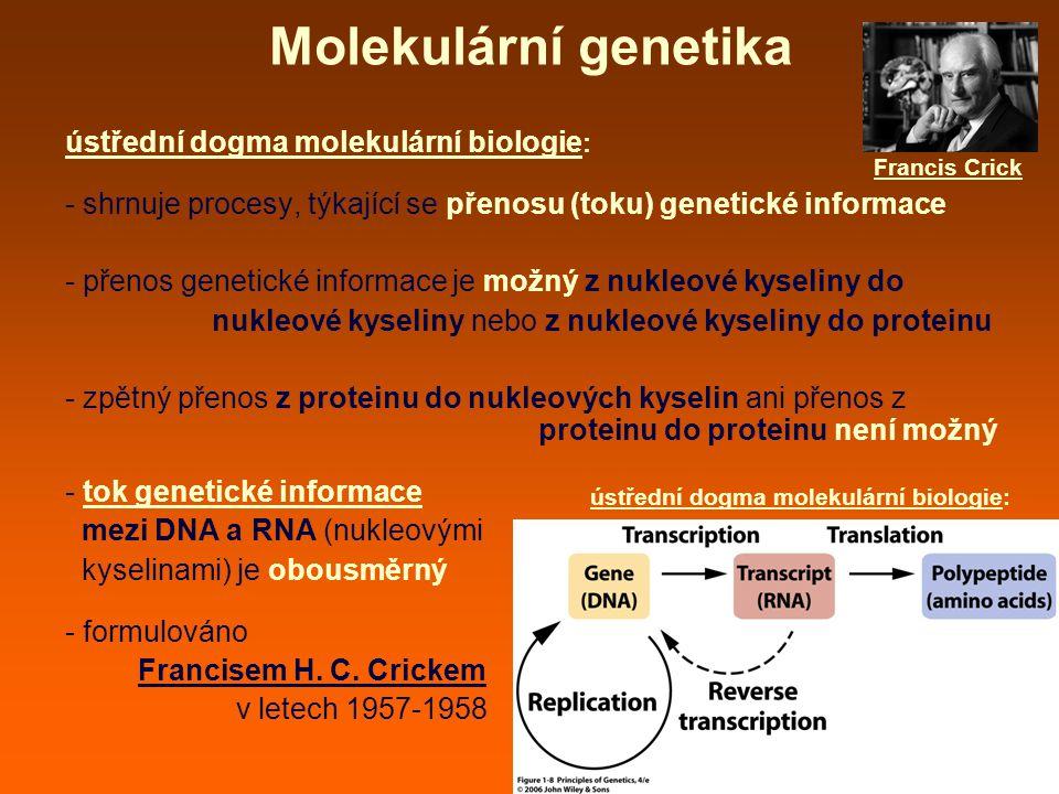 Molekulární genetika ústřední dogma molekulární biologie : - shrnuje procesy, týkající se přenosu (toku) genetické informace - přenos genetické informace je možný z nukleové kyseliny do nukleové kyseliny nebo z nukleové kyseliny do proteinu - zpětný přenos z proteinu do nukleových kyselin ani přenos z proteinu do proteinu není možný - tok genetické informace mezi DNA a RNA (nukleovými kyselinami) je obousměrný - formulováno Francisem H.