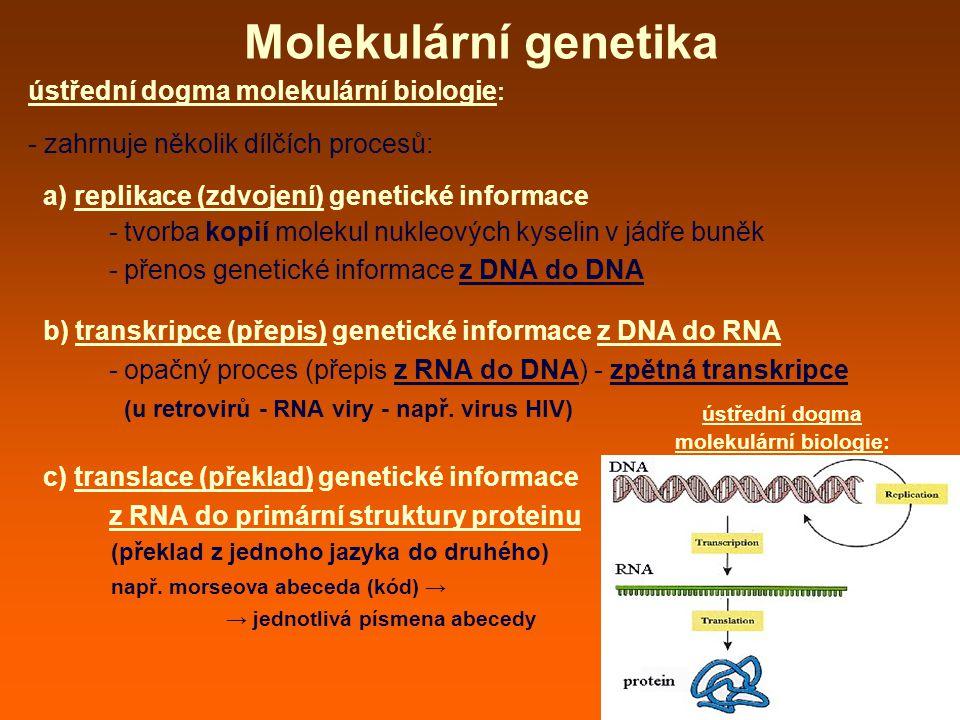 Molekulární genetika ústřední dogma molekulární biologie : - zahrnuje několik dílčích procesů: a) replikace (zdvojení) genetické informace - tvorba kopií molekul nukleových kyselin v jádře buněk - přenos genetické informace z DNA do DNA b) transkripce (přepis) genetické informace z DNA do RNA - opačný proces (přepis z RNA do DNA) - zpětná transkripce (u retrovirů - RNA viry - např.