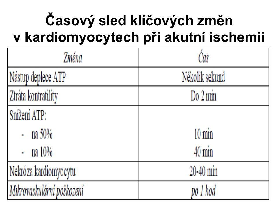 Časový sled klíčových změn v kardiomyocytech při akutní ischemii