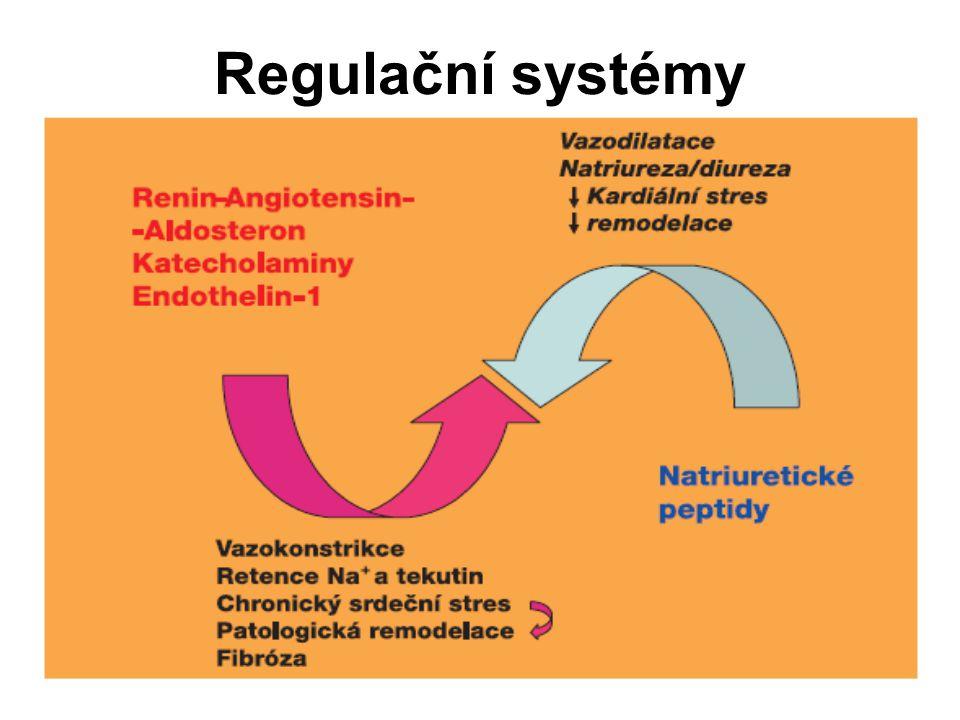Regulační systémy