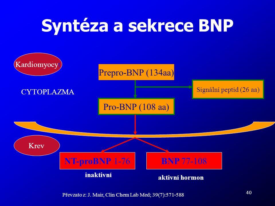 40 Syntéza a sekrece BNP Převzato z: J. Mair, Clin Chem Lab Med; 39(7):571-588 Prepro-BNP (134aa) Pro-BNP (108 aa) Signální peptid (26 aa) BNP 77-108N