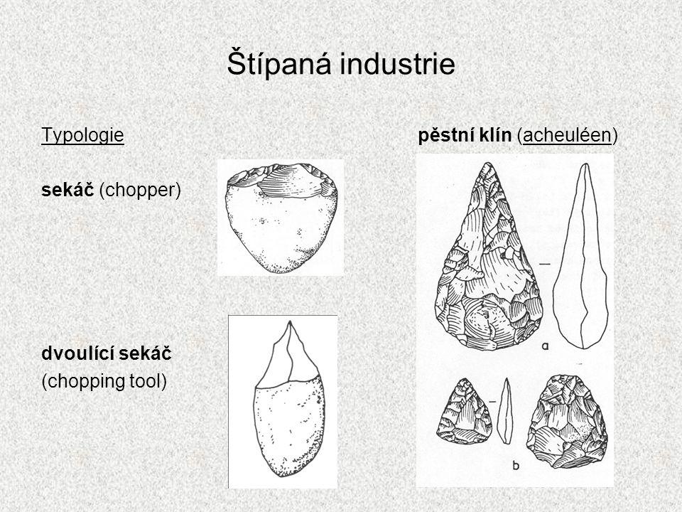 Štípaná industrie Typologie sekáč (chopper) dvoulící sekáč (chopping tool) pěstní klín (acheuléen)