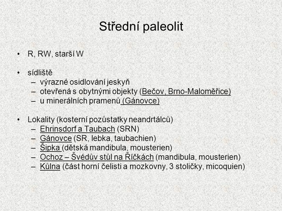 Střední paleolit R, RW, starší W sídliště –výrazné osidlování jeskyň –otevřená s obytnými objekty (Bečov, Brno-Maloměřice) –u minerálních pramenů (Gán