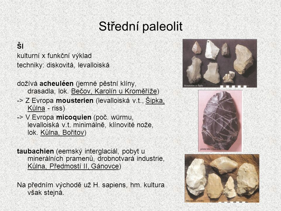 Střední paleolit ŠI kulturní x funkční výklad techniky: diskovitá, levalloiská dožívá acheuléen (jemné pěstní klíny, drasadla, lok. Bečov, Karolín u K