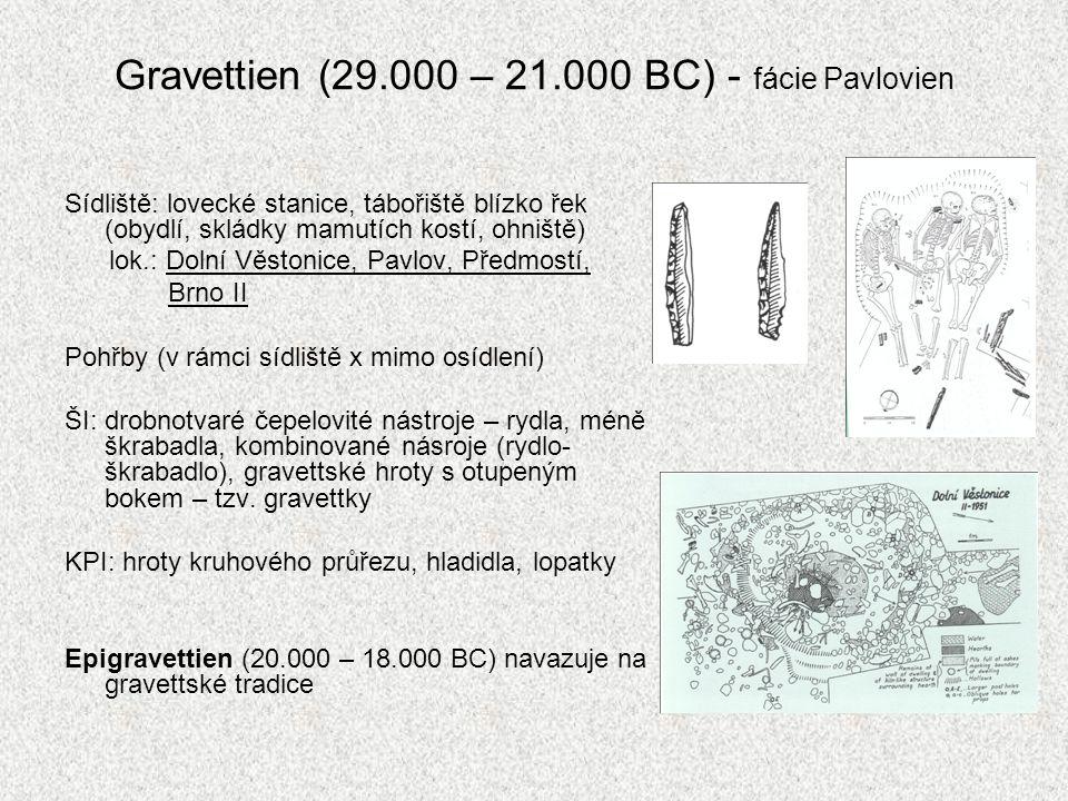 Gravettien (29.000 – 21.000 BC) - fácie Pavlovien Sídliště: lovecké stanice, tábořiště blízko řek (obydlí, skládky mamutích kostí, ohniště) lok.: Doln