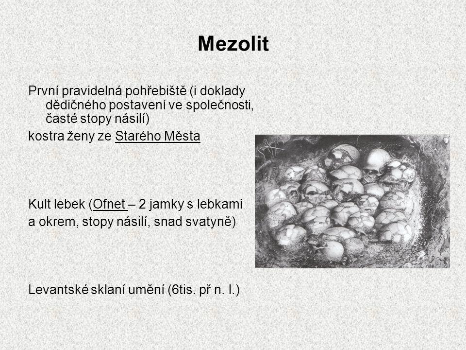 Mezolit První pravidelná pohřebiště (i doklady dědičného postavení ve společnosti, časté stopy násilí) kostra ženy ze Starého Města Kult lebek (Ofnet