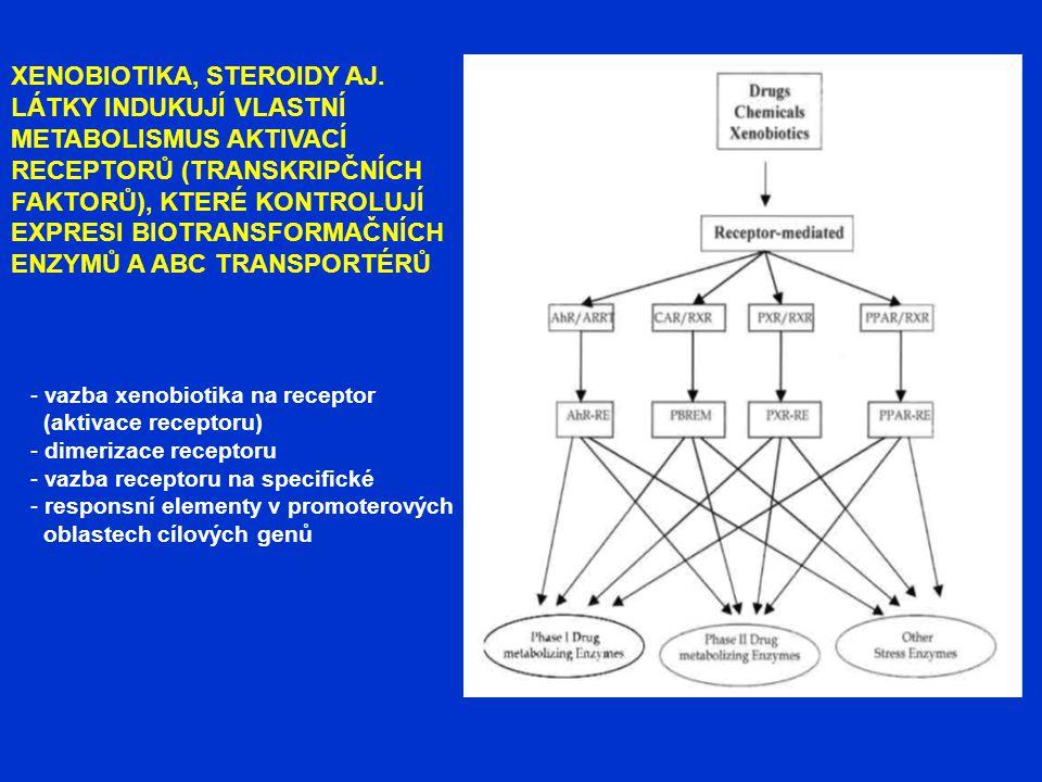 XENOBIOTIKA, STEROIDY AJ. LÁTKY INDUKUJÍ VLASTNÍ METABOLISMUS AKTIVACÍ RECEPTORŮ (TRANSKRIPČNÍCH FAKTORŮ), KTERÉ KONTROLUJÍ EXPRESI BIOTRANSFORMAČNÍCH