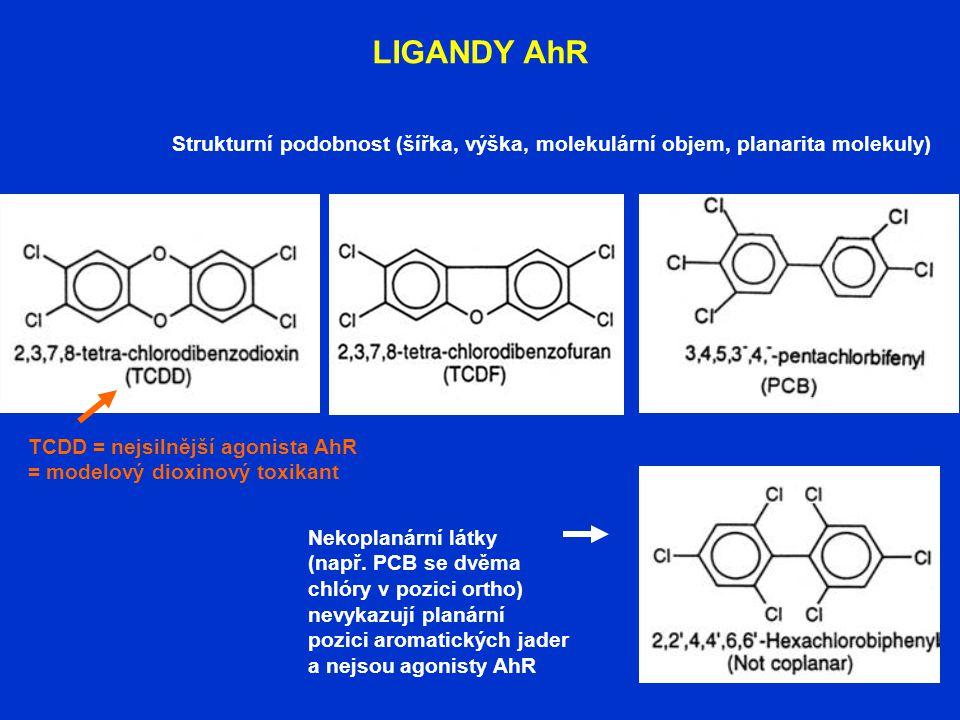 LIGANDY AhR Strukturní podobnost (šířka, výška, molekulární objem, planarita molekuly) Nekoplanární látky (např. PCB se dvěma chlóry v pozici ortho) n