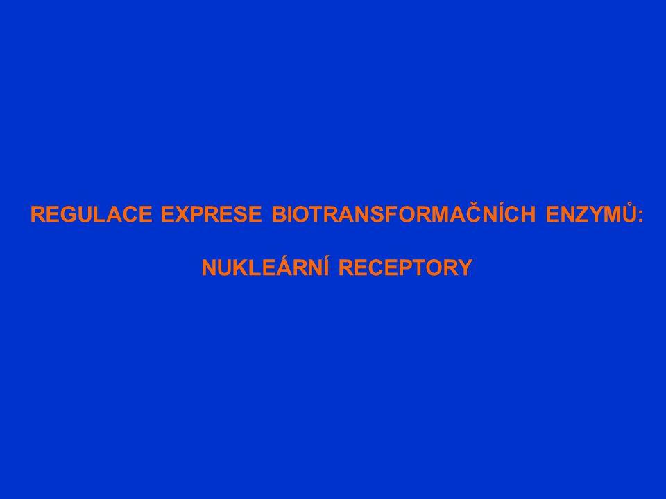 REGULACE EXPRESE BIOTRANSFORMAČNÍCH ENZYMŮ: NUKLEÁRNÍ RECEPTORY