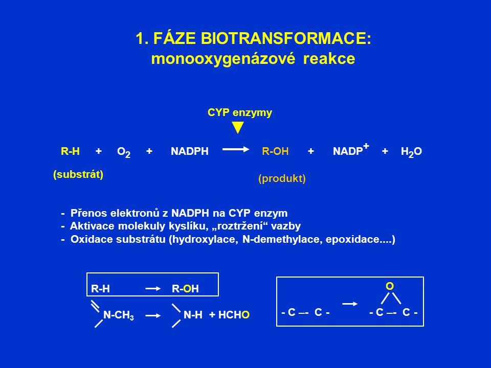 1. FÁZE BIOTRANSFORMACE: monooxygenázové reakce (substrát) R-H + O 2 + NADPH R-OH + NADP + + H 2 O (produkt) CYP enzymy - Přenos elektronů z NADPH na