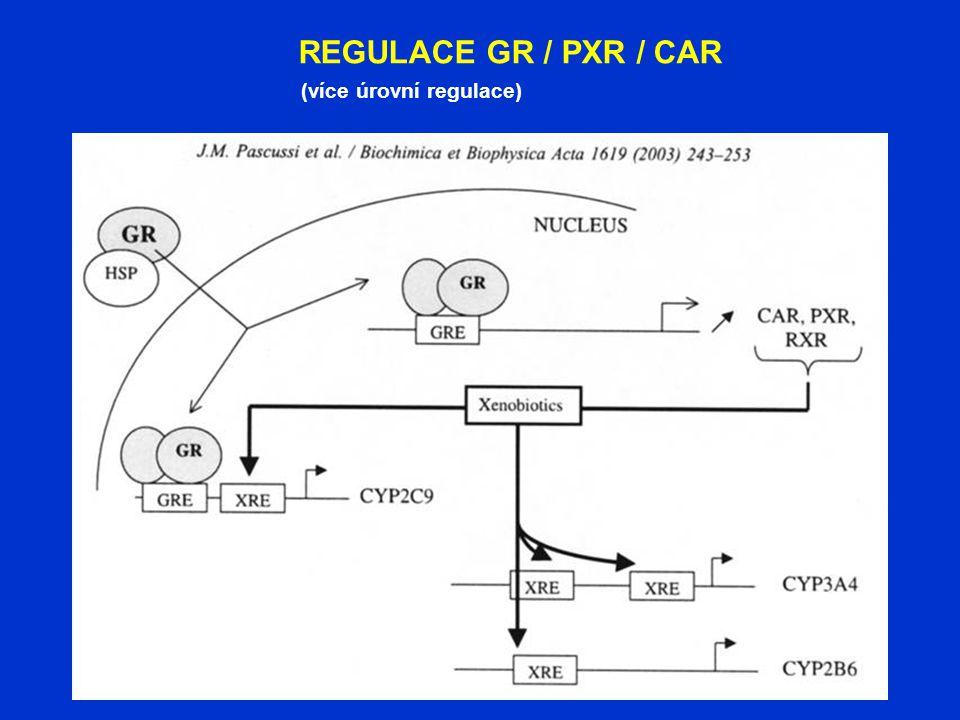 REGULACE GR / PXR / CAR (více úrovní regulace)